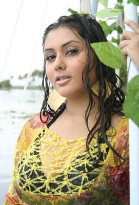 latest hot stills of namitha